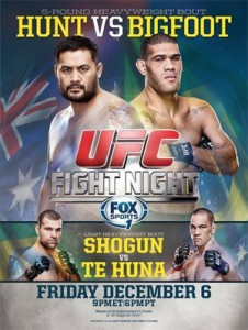 ufc fight night 33 poster
