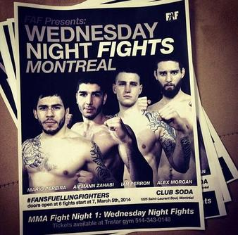 MMA Fight Night 1 results